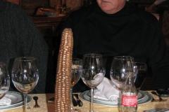 prof._dr_dragan_radenovic_i_krivak