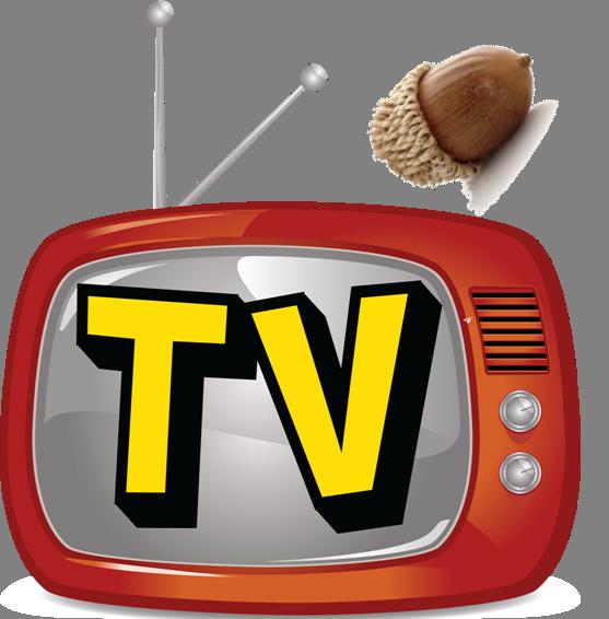 TV Zir